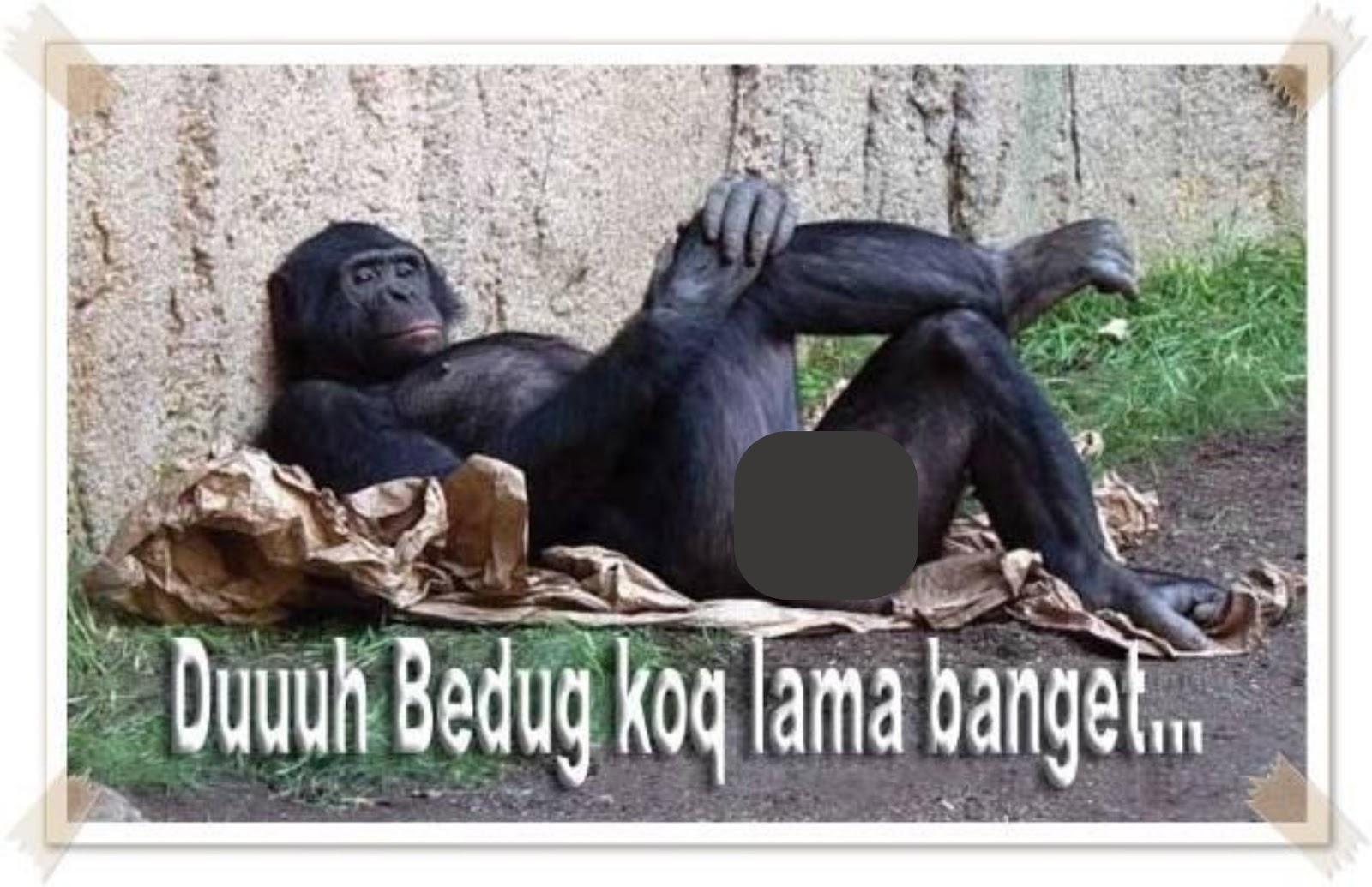 Tips Berburu Barang Mewah Harga Murah Meriah di Lazada.co.id ... f6a54f99c4