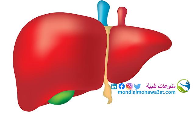 علامات سلامة الكبد، ماهي علامات و اعراض مرض الكبد؟، كيفية تنظيف الكبد من السموم و الحفاظ عليه، اعراض التهاب الكبد الفيروس