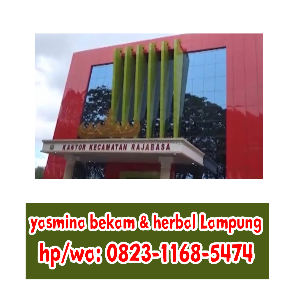 Alamat Kantor Kecamatan Di Bandar Lampung Info Alamat Terbaru