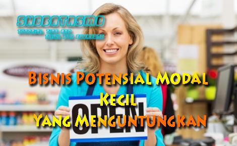 Bisnis Potensial Modal Kecil Yang Menguntungkan