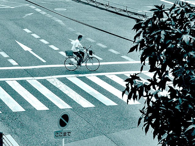 Man riding bike crossing zibra lines, traffic crossroad, Japanese stop sign