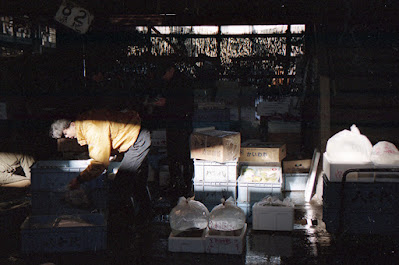 Magic moment at old Tsukiji Market in Tokyo