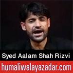 http://www.humaliwalayazadar.com/2016/10/syed-aalam-shah-rizvi-nohay-2017.html