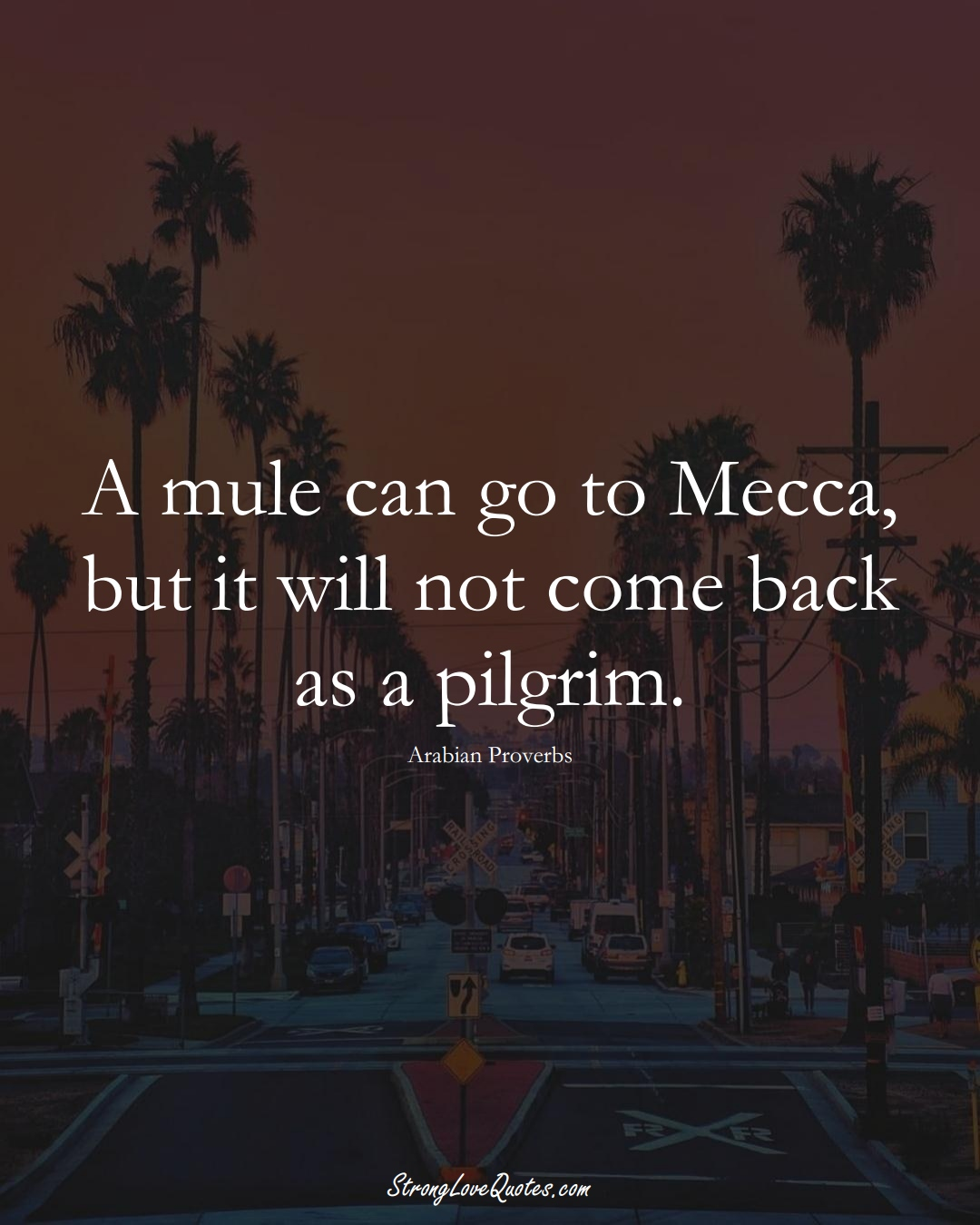 A mule can go to Mecca, but it will not come back as a pilgrim. (Arabian Sayings);  #aVarietyofCulturesSayings