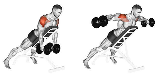 Incline Dumbbell Lateral Raise