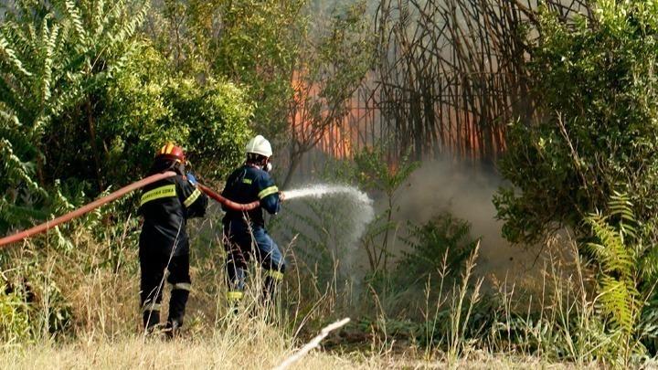 Σε εξέλιξη βρίσκεται πυρκαγιά σε δασική έκταση στην Νυμφαία