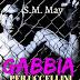 Pensieri su GABBIA PER UCCELLINI di S.M. May