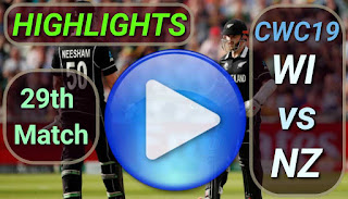 NZ vs WI 29th Match