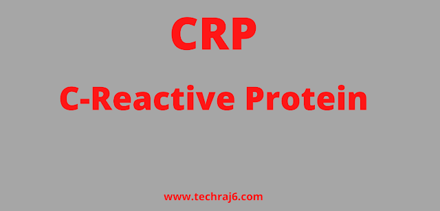 CRP full form, What is the full form of CRP