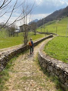 Trail 533 in Salmezza.