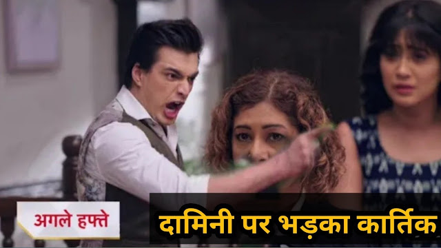 Mindblowing Twist : Kartik accepts wife Naira in court stands for Naira's self-respect in YRKKH