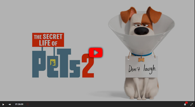 The Secret Life Of Pets 2 Full Movie Online Hd 2019 Imdbmovies S