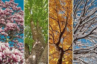mevsimler hakkında yazılar