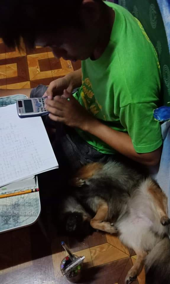 Jeremy even has to scratch his pet dog to sleep while studying