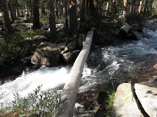 Der Baumstamm, auf dem man die Lyell Fork des Merced River überqueren musste