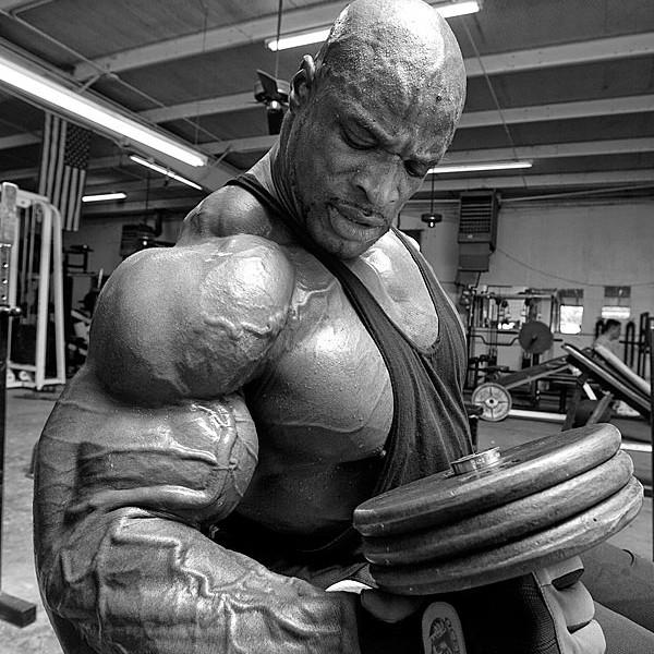 Ronnie Coleman Biceps
