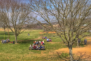 Summer winery picnic