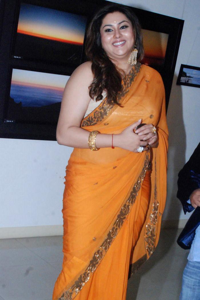 Namitha Kapoor So Charming In Chiffon Saree
