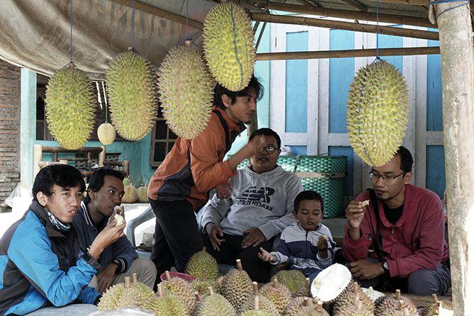 Teman-teman yang menikmati durian