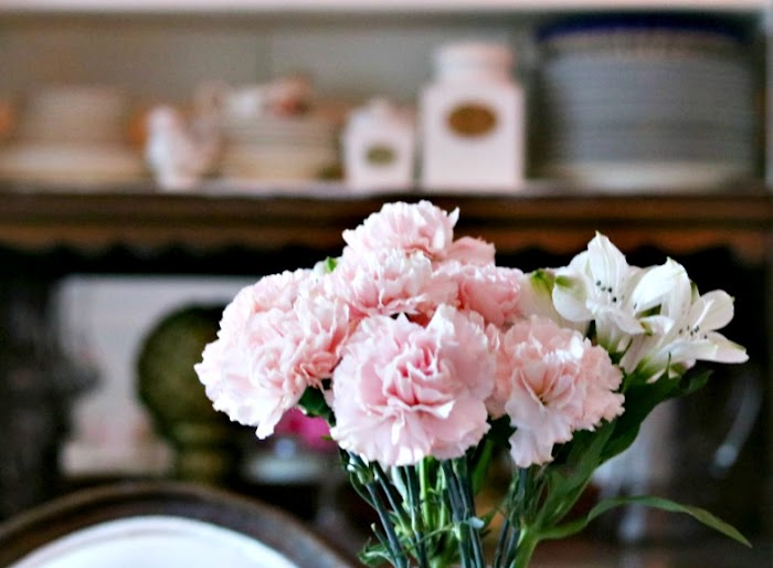 Growing Carnations For The Home and Garden|Gardening Series 1