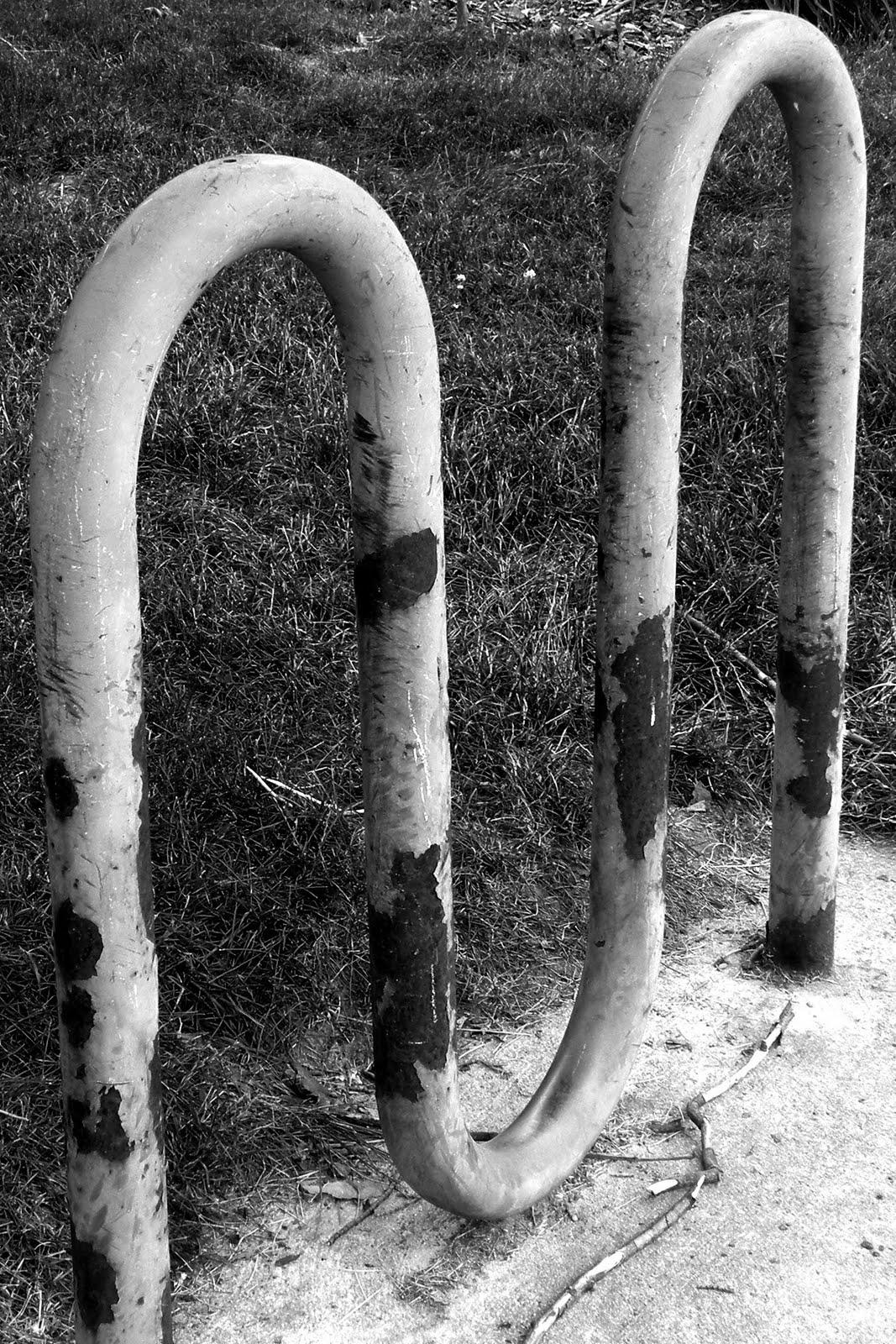 Nature Alphabet Photography Letters M
