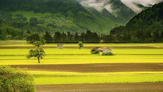 Gambar Wallpaper Pemandangan Alam Keren