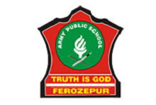 Librarian post at Army Public School, Ferozepur