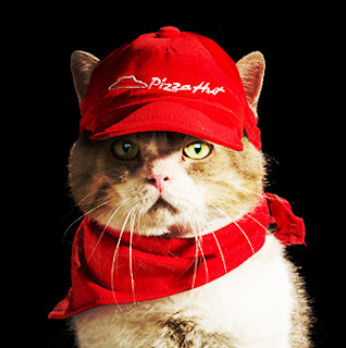 Tencho Pizza Hut Cat