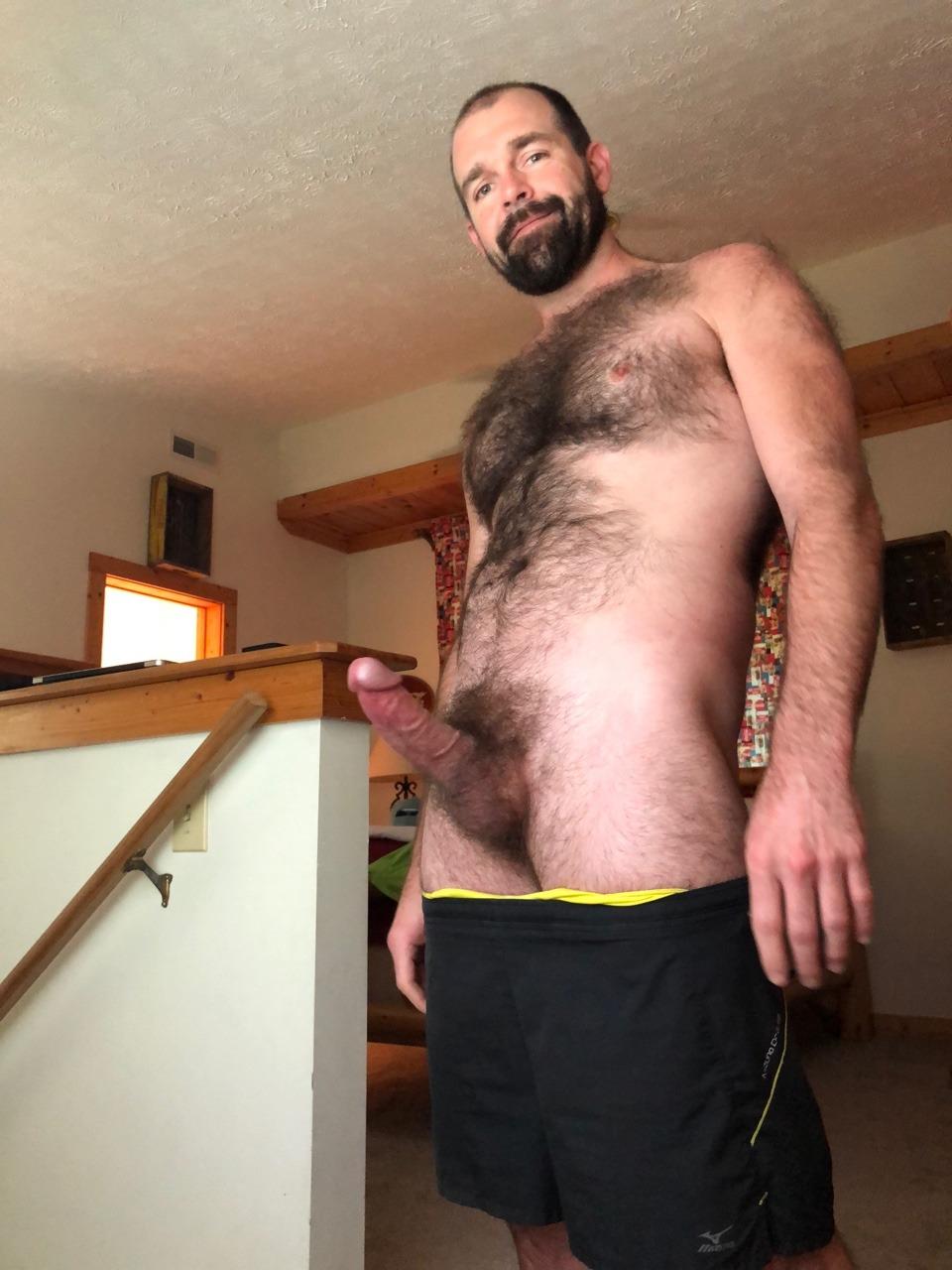 chubby bears pic