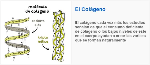 El Colágeno eliminar varices