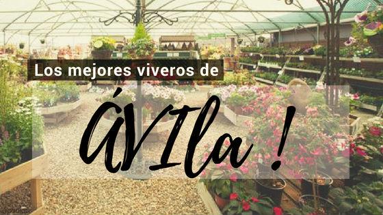 comprar plantas online en Avila