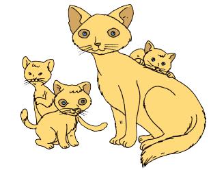 gambar Kucing dan anaknya www.simplenews.me