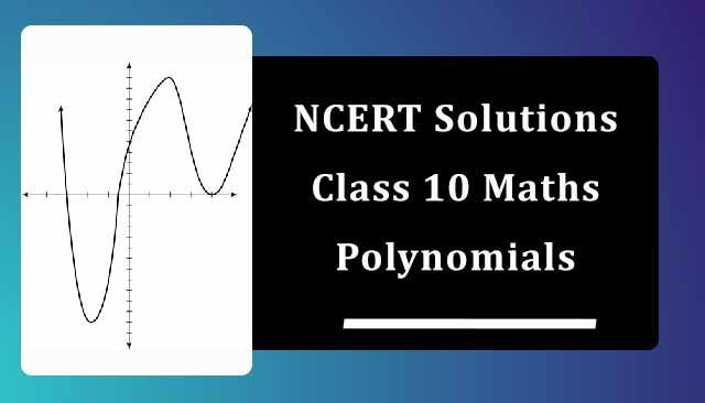 NCERT Solutions for Class 10 Maths Chapter 2 Polynomials