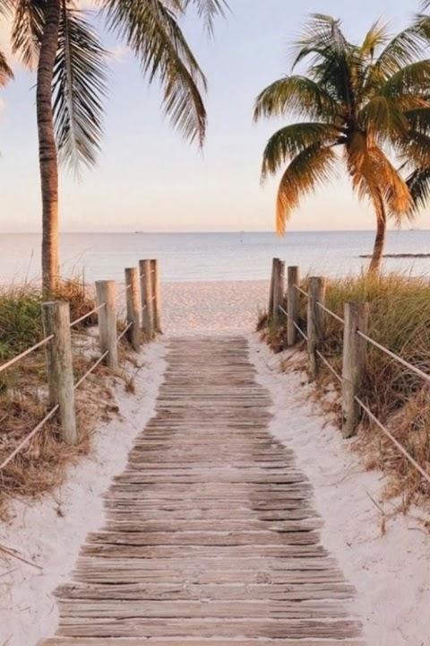 Lối nhỏ trên bãi biển