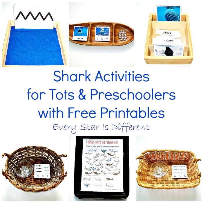 Shark Activities for Tots and Preschoolers