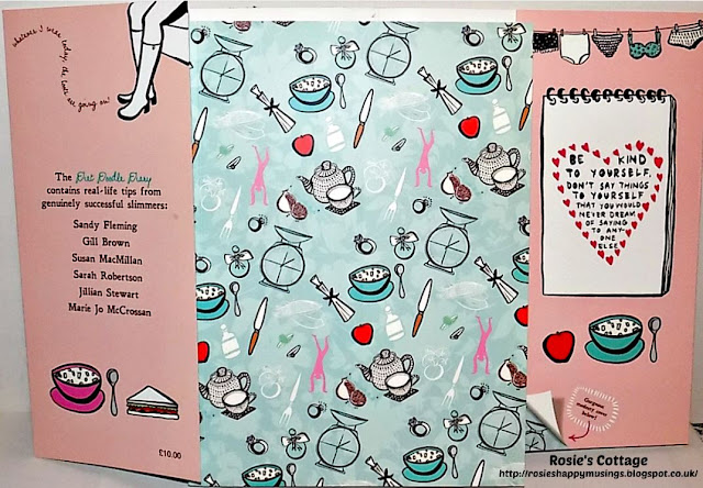 Diet Doodle Diary slip cover