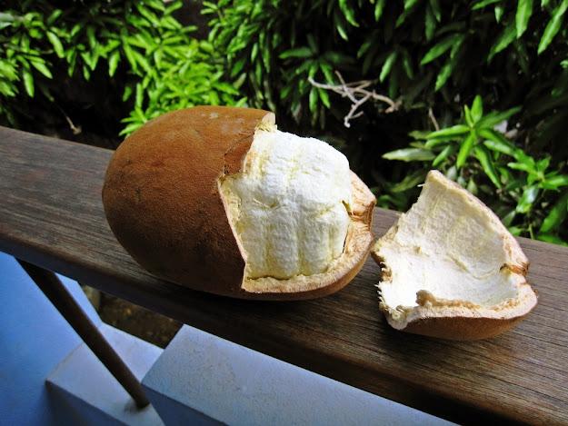 Doce ou Geléia de cupuaçu caseira bem fácil