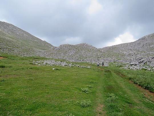 Wysepka zieleni w górnych partiach doliny.