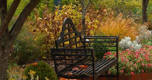 Landscaping To Do's for November in Boise, Meridian, Eagle, and Nampa, Idaho