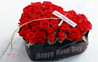 rose day dp