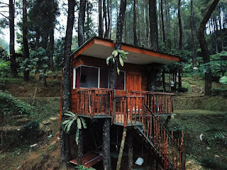 TREE HOUSE RIMBA PUNCAK BOGOR