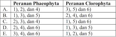 Phaeophyta dan Clorophyta