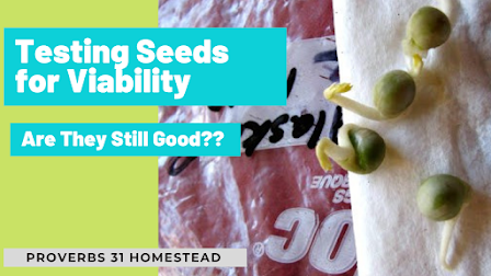 Testing Seeds for Viability