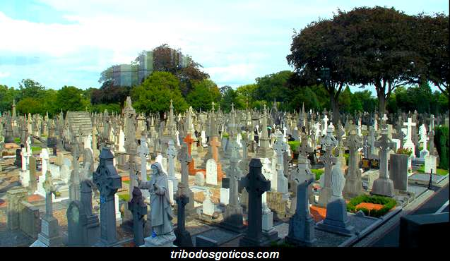 cemiterio goticos solidao sozinho vazio lapides