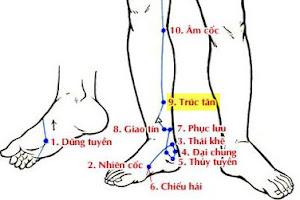 Huyệt Trúc Tân