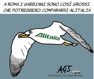 salvini, roma, gabbiani, alitalia, vignetta, satira