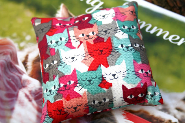 My Purrfect Gift Box for Cats - A Day In The Park