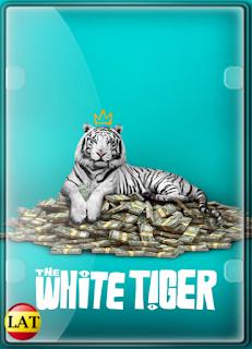 Tigre Blanco (2021) DVDRIP LATINO