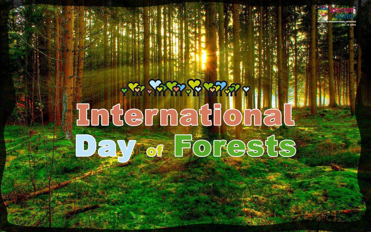 International Day of Forests Wishes Images download