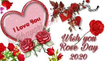 happy Rose Day Shayari 2020